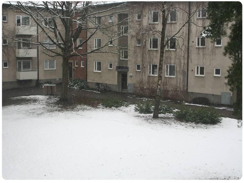 Höst-vinterbild 4