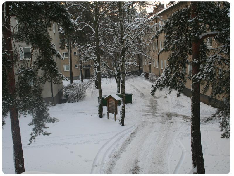 Höst-vinterbild 6